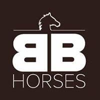 BB Hesteutstyr 1