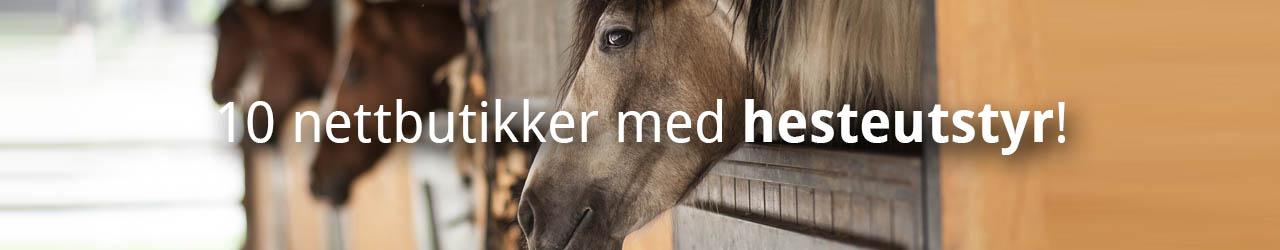 Disse Butikkene Selger Hesteutstyr På Nett!