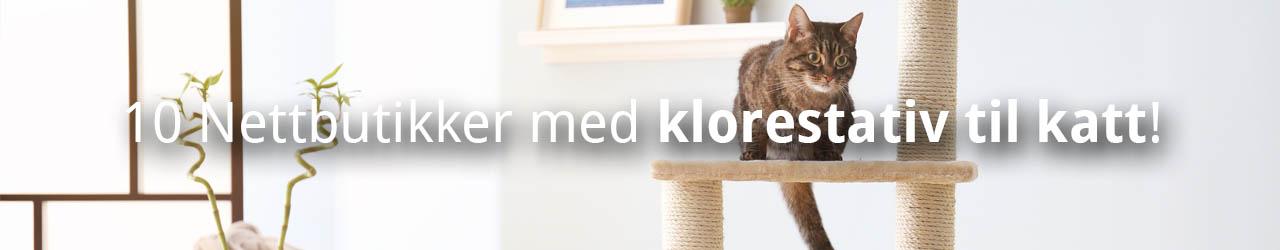 10 Nettbutikker med klorestativ til katt!
