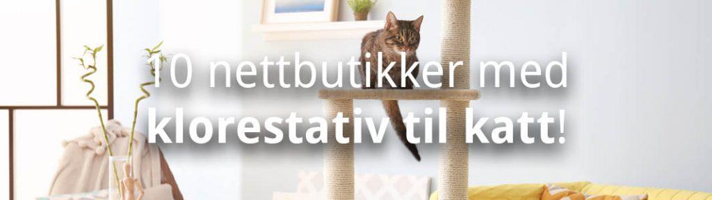 klorestativ til katt