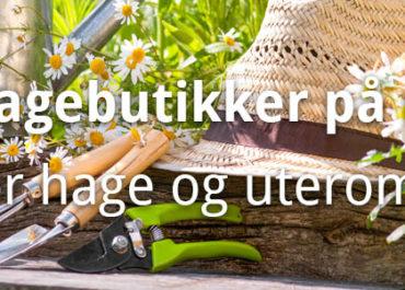 10 Hagebutikker på nett for hage og uterom! (2020)