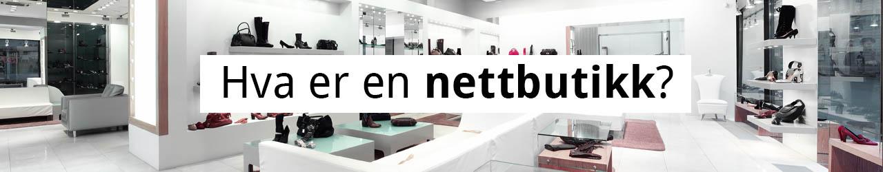 Hva er en nettbutikk? 1