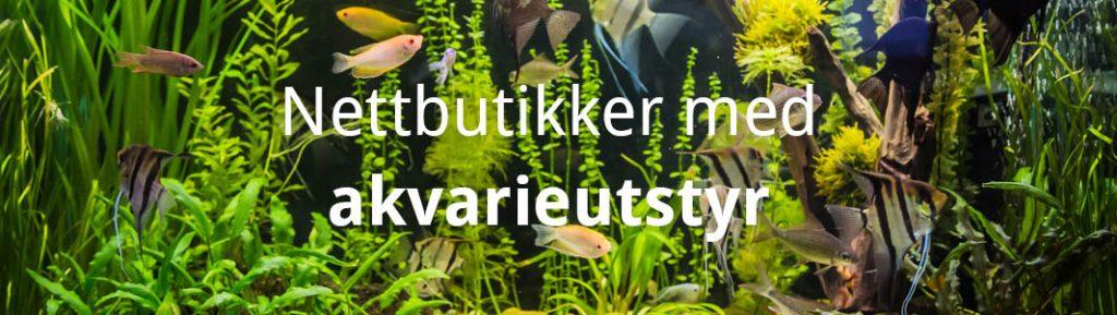 Nettbutikker med akvarieutstyr