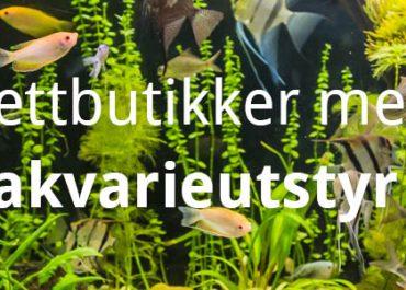 10 beste akvarie nettbutikker med akvarium og utstyr! (2020)