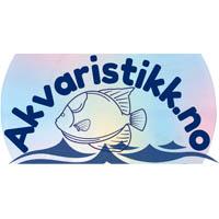 Akvaristikk