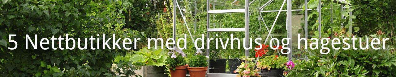 5 Nettbutikker med drivhus og hagestuer